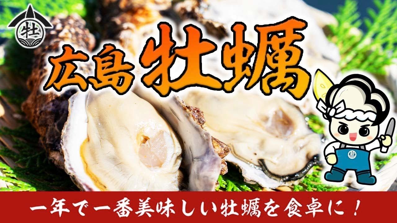 【一年で1番美味しい牡蠣を食卓に】クラウドファンディングを立ち上げました!