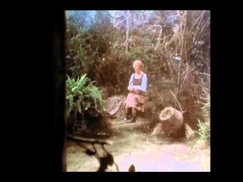 Downloaden Hansel Und Gretel Lyrics – Kostenlos online Musik