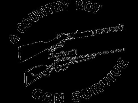 Hank Williams jr. ~ Country boy can survive, (lesson) on acoustic ...