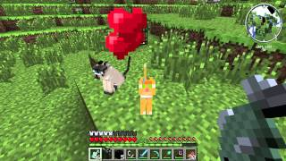 How to Tame a Cat in Minecraft : Minecraft Tips