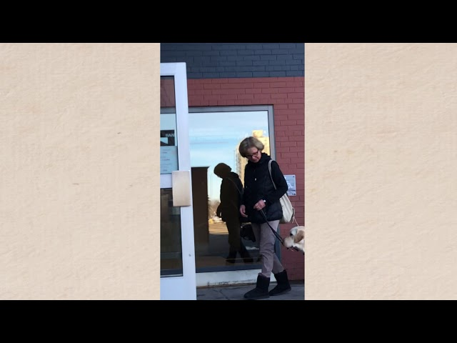 Atrej rocking door opening! - Aspen Service Dogs
