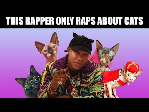 Moshow The Rapper Will Make You Say Meow