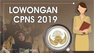 Download Video Pendaftaran PPPK atau P3K Sudah Dibuka, Ini Kabar Terbaru Jadwal CPNS 2019 MP3 3GP MP4