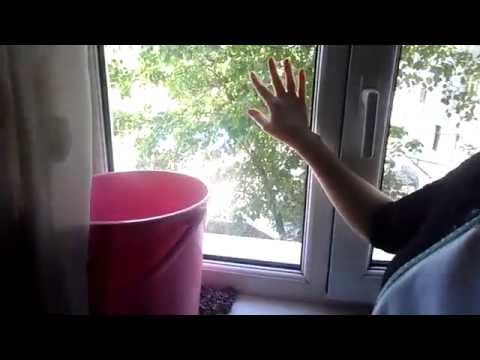 окна анекдоты чме