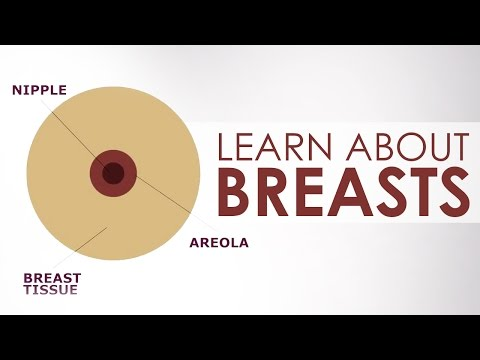 Learn About Breasts And Girls During Puberty | Her Body