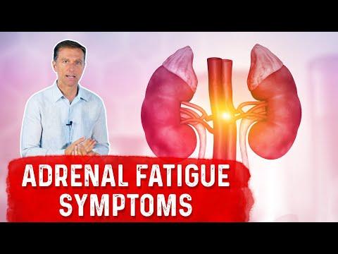 The Non-Stress Cause of Adrenal Fatigue Symptoms