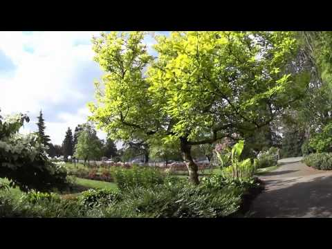 A Walk through Hillcrest and Queen Elizabeth Parks in Vancouver