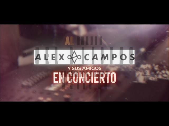 Concierto Alex Campos y sus amigos en