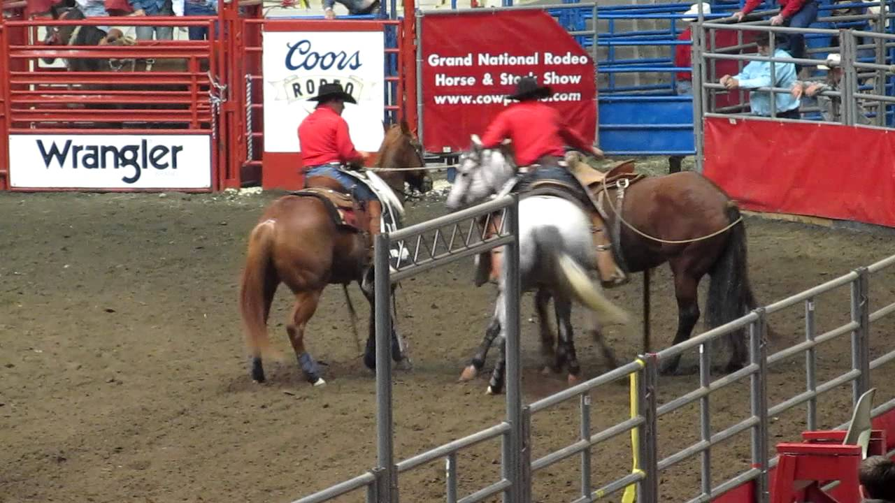 rodeo cruelty Rodeo humane facts-----prca animal-welfare guidelines set standards for rodeo.