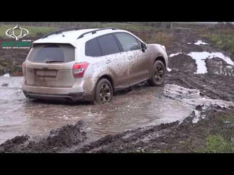 Грязьові ванни Subaru Forester