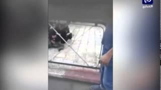 فيديو: شاهد إصابة شرطي اسرائيلي بالقدس واستشهاد منفذ العملية  