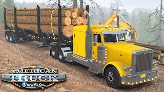 Transport z tartaku - American Truck Simulator | (#41)