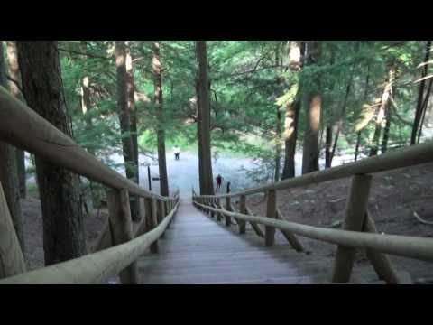 Jacobs Ladder  -  Victoria Park,  Truro, Nova Scotia