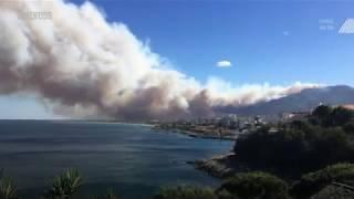 Incendie en Haute-Corse: 900 hectares sinistrés, des maisons menacées