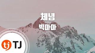 [TJ노래방 / 멜로디제거] 체념 - 빅마마 / TJ …