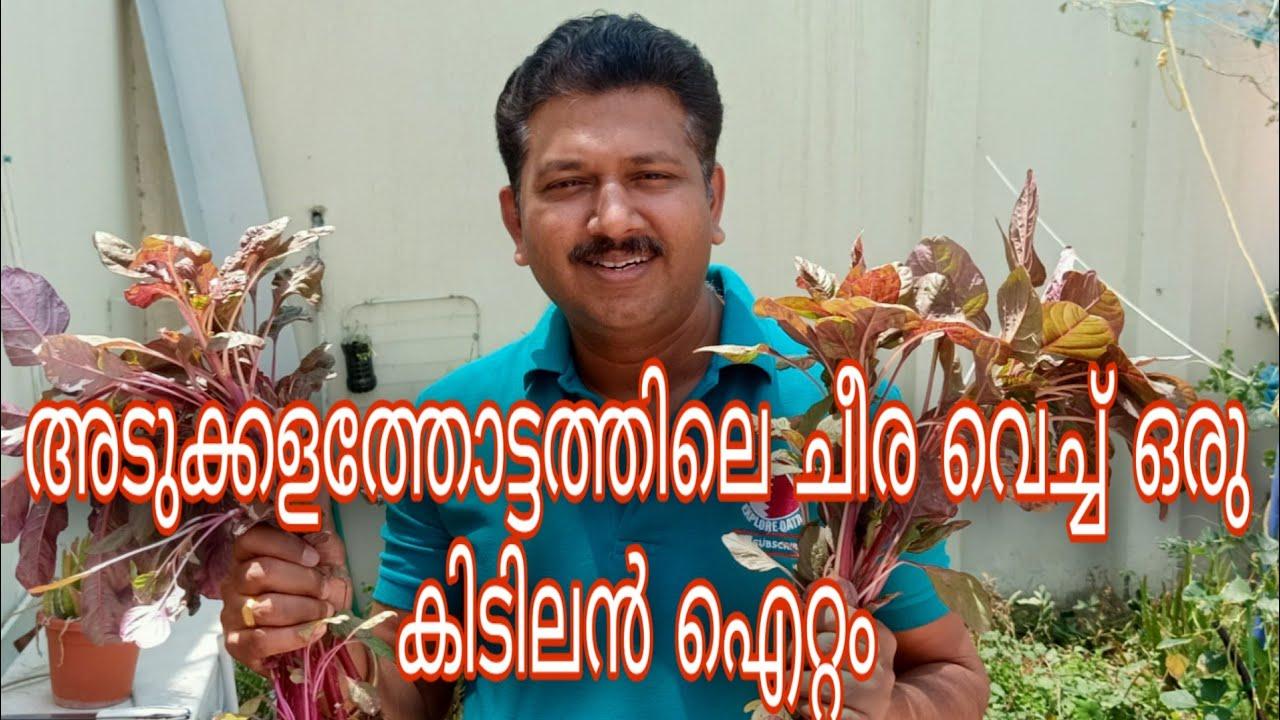 അടുക്കളത്തോട്ടത്തിലെ ചീര വെച്ച് ഒരു കിടിലൻ ഐറ്റം | Spinach Egg Recipe In Malayalam