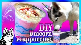 DIY UNICORN FRAPPUCCINO FOR DOGS   DIY Dog Treats  Snow Dogs Snacks 72