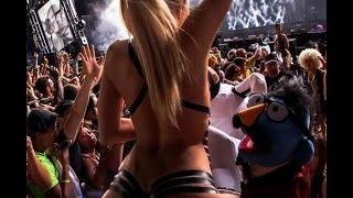 Yellow Claw - Live @ Ultra Music Festival 2015 (UMF 2015) Live Set