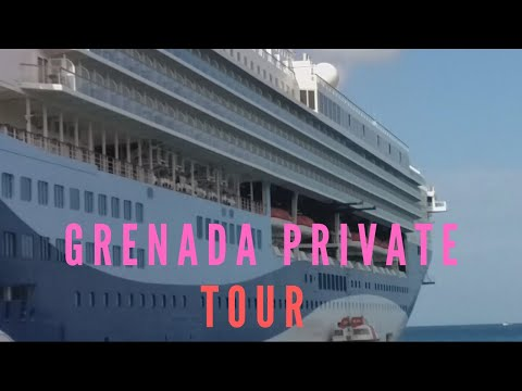 Grenada Island Private Tour | Vlog | St Georges | Cruise Ship | 2019
