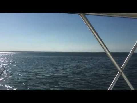 Fishing Chesapeake Bay