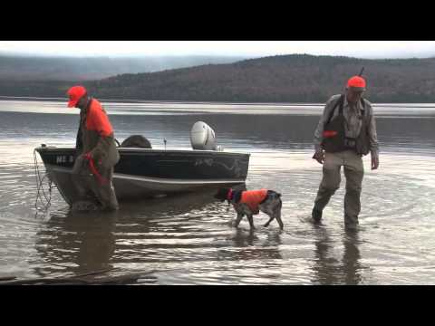 Maine Grouse Hunting At Grants Kennebago Camps 2014