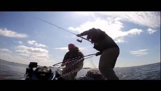 Первый этап Pro Anglers League 2014. Экипаж Питерцов-Живин. Gold Digger