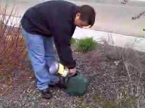 How To Ly Dr Jimz Save A Tree Fertilizer