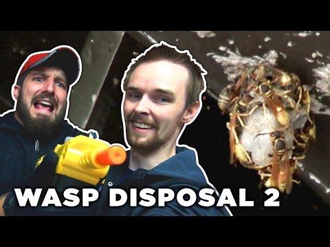 WASP DISPOSAL 2: Bug-A-Salt