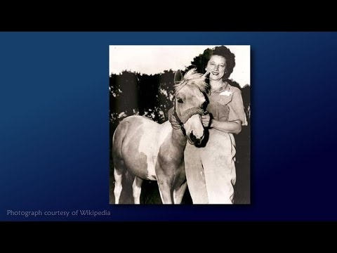 How Misty Made Chincoteague Horses Famous