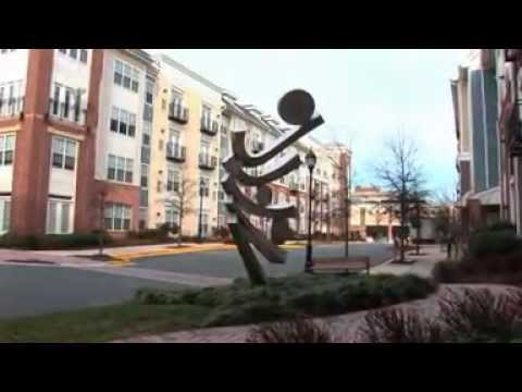 The Residences At Congressional Village - Apartments For Rent In Rockville, MD