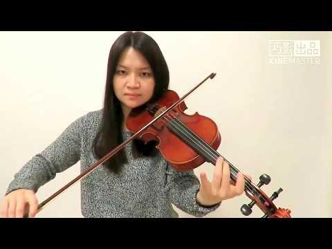 Avicii - Wake Me Up(Violin Cover)