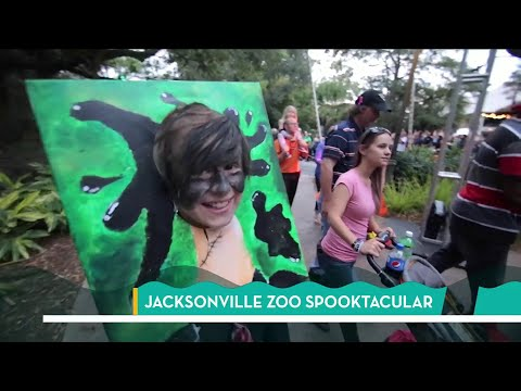 Spooktacular at the Jacksonville Zoo