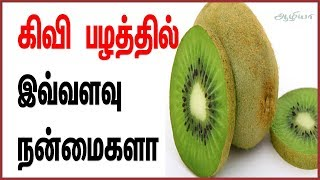 Kiwi Fruit | Kiwi Fruit in Tamil | Kiwi Fruit Benefits in Tamil | கிவி பழம் | Health Tips in Tamil