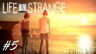 Life is Strange - Ep1 - #5 - Климат меняется?