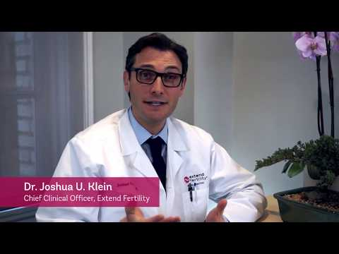 Ask Dr. Klein: How do frozen eggs become babies?
