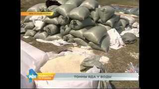 Более 5 тонн химикатов обнаружено на берегу реки в Иркутском районе(, 2015-05-22T06:04:07.000Z)