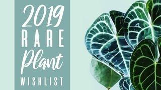 My 2019 Rare  / Uncommon Plant Wish list (So Far!)