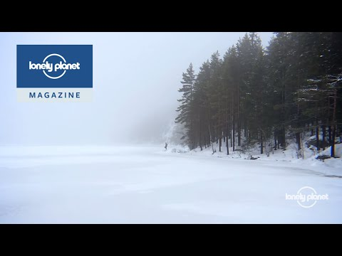 Tracking wolves in Sweden - Lonely Planet travel videos
