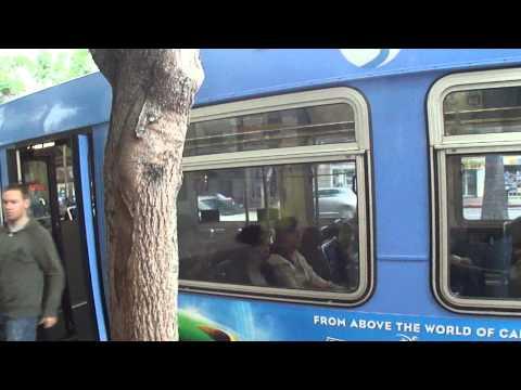 Santa Monica Big Blue Bus New Flyer D40LF 3801