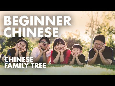 Chinese Speaking Practice Lesson 2.3 |  HSK1 Listening Practice | Family Members Tree in Chinese