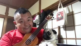 誰でも弾けるウクレレを使って理論と実践をリンクできる画期的な音楽理...