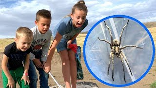 CATCHiNG GiANT SPiDERS
