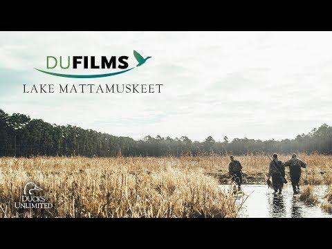 DU Films 2018: Lake Mattamuskeet