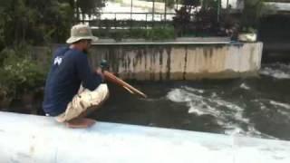 Repeat youtube video ปืนยิงปลา ณ ทวีวัฒนา