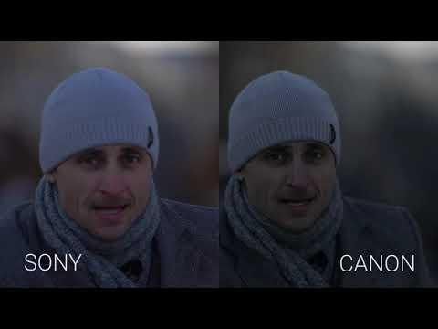 Жениться на Sony A7R III ? или бросить Canon 5D Mark IV ? тест, сравнение в реальных боевых условиях
