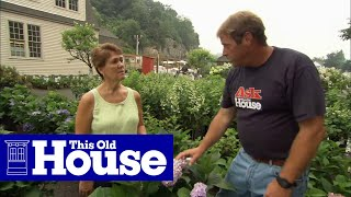 How to Choose and Plant Hydrangeas - This Old House