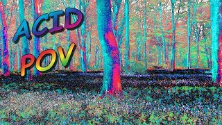 Realistic Acid Trip POV (Point of View)