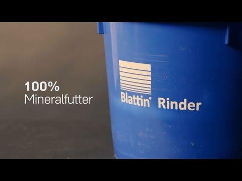 Blattin Mineralleckmasse -