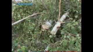 видео новое в Домодедово ремонт