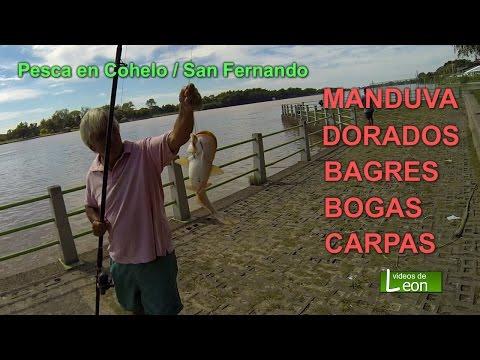 Pesca en Cohelo / Costanera San Fernando.